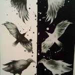 clayton-kemp-birds