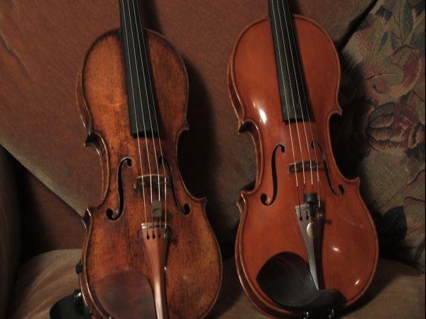 smaller-violins