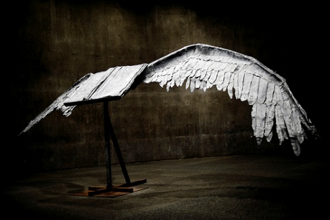 bookwithwings