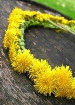 Make a flower crown at the Bob Jones Nature Center. (photo: Bob Jones Nature Center)