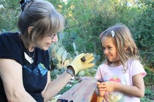 Come meet some bats at Earth Day Texas. Photo: USFWS/Ann Froschauer