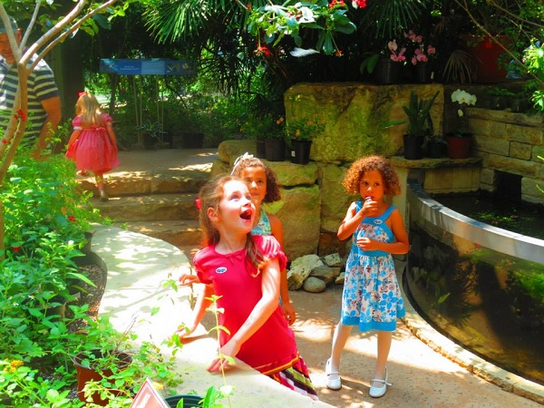 Saw hello to a butterfly or two at Butterflies and Bugs! Family Festival. Photo: Therese Powell