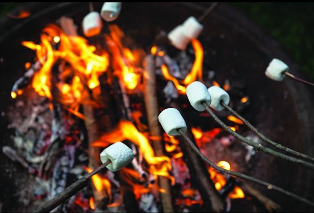 Take part in some winter outdoor dining this weekend at Dogwood Canyon Audubon Center.
