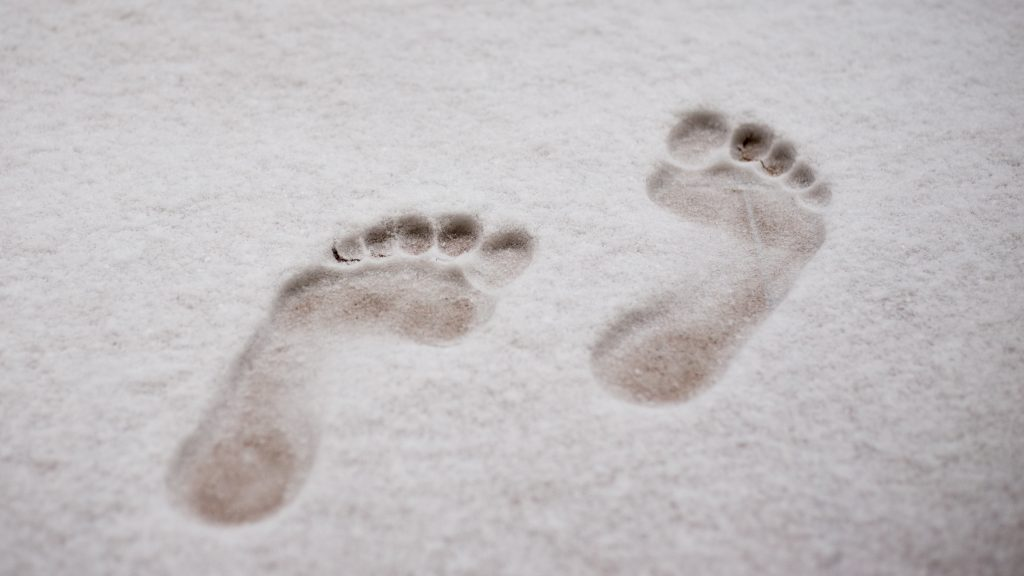 Is Bigfoot real? Find out at the Bedford Public Library. Photo: shutterstock.com