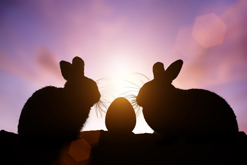 Teens can put a twist in their egg hunt with the Twilight Egg Hunt in Denton. Photo: shutterstock.com